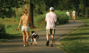Camminare riduce il colesterolo.