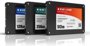 Disco fisso SSD di varie GB di capacità.