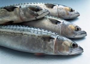 Pesce azzurro, Omega 3.
